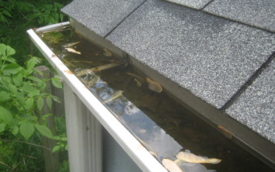 Home Maintenance Tips to Prevent Water Leaks